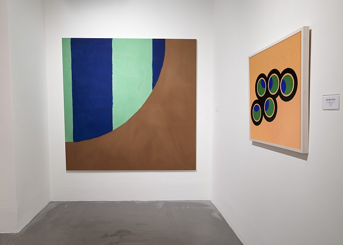 Edward Avedisian: Reverberations - Installation View